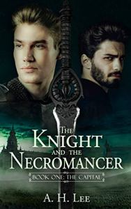 lgbtrd-knightandthenecromancer